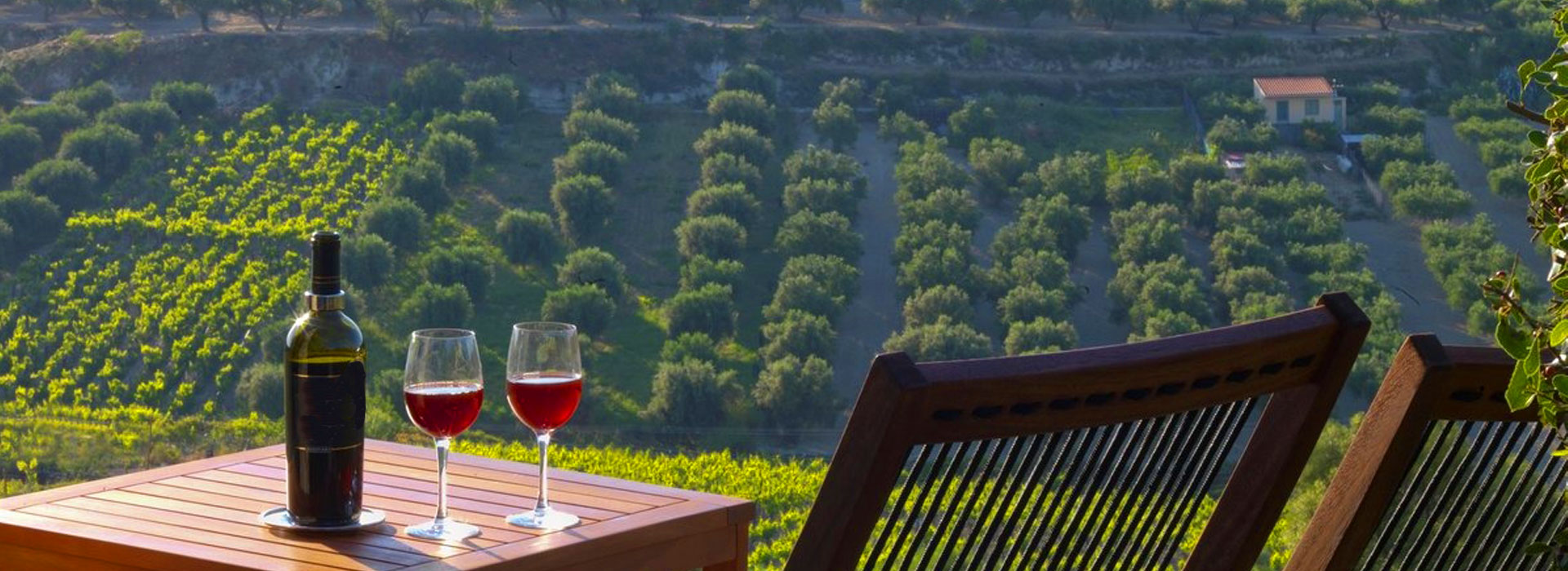 Winery tour with panoramic view of Chania